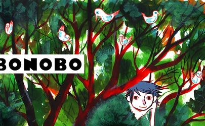 <b>BONOBO-HD_site.jpg