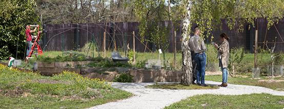 jardin barail reportage newsmediation